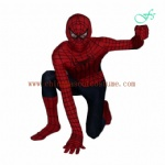 Spiderman character disney mascot costume